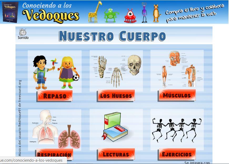 El cuerpo humano y sus partes en 1º | Blog de Primaria 1º- 2º EPO