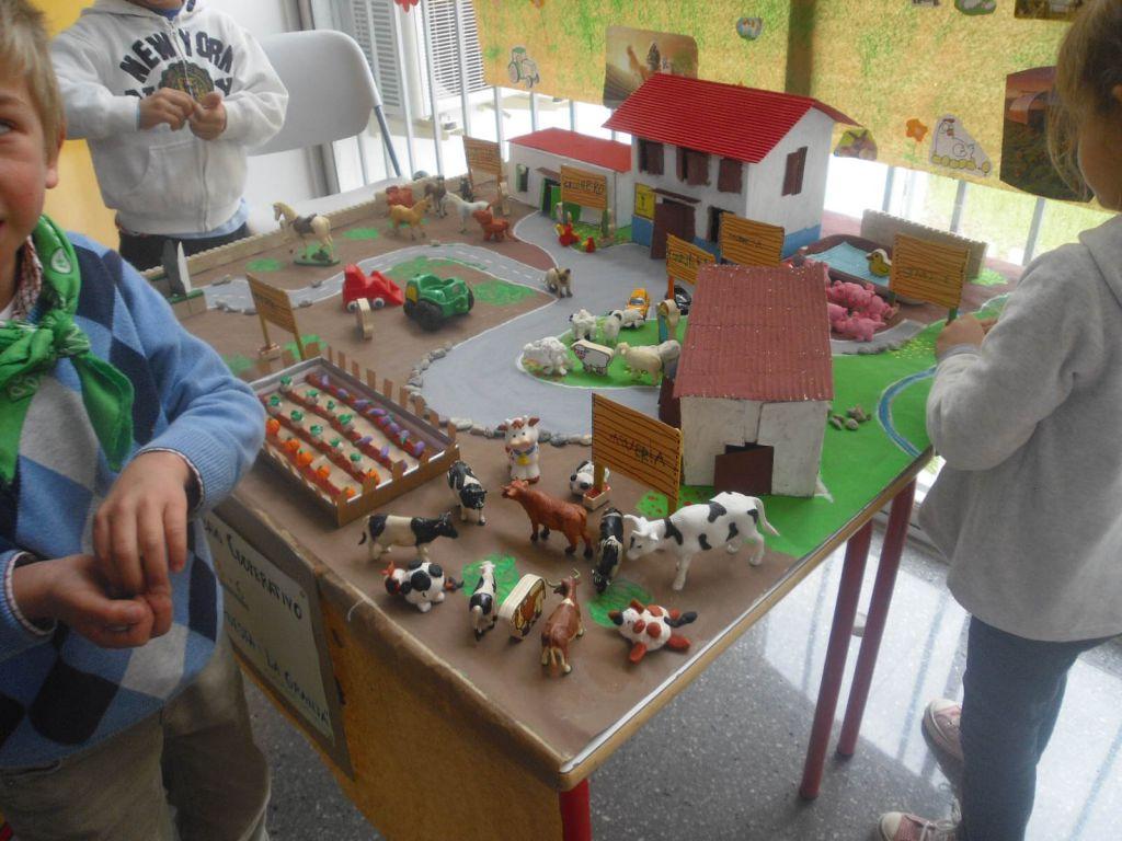 Clase verde blog de infantil roja verde for Como hacer una granja de peces